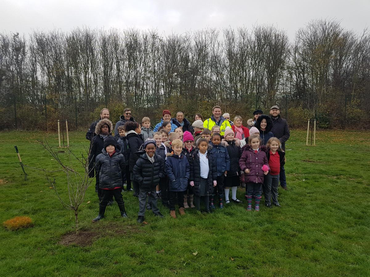 Group shot of children planting trees